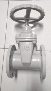 tozen valve